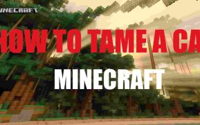 Tame a cat in minecraft